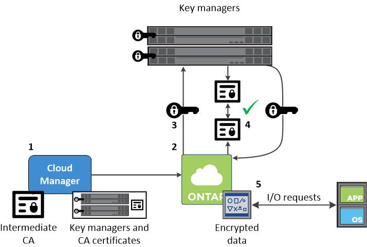 Security | NetApp Cloud Docs